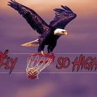 fly so high basketball