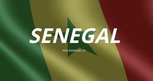Les lions du Senegal