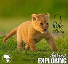 Exploring\u00a0Africa