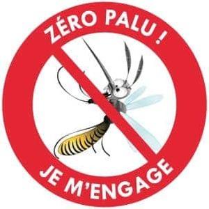 AISM Thienaba : lutte contre le paludisme