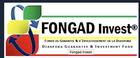 Fonds de Garantie de la Diaspora et d'Investissement